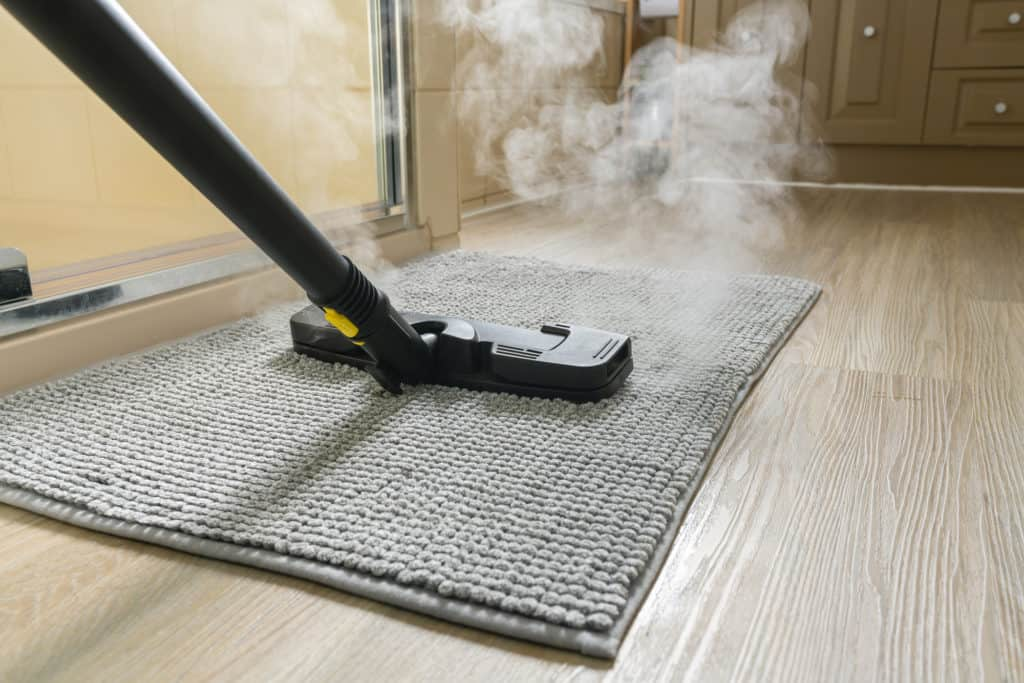 How to Choose a Steam Cleaner in Canada