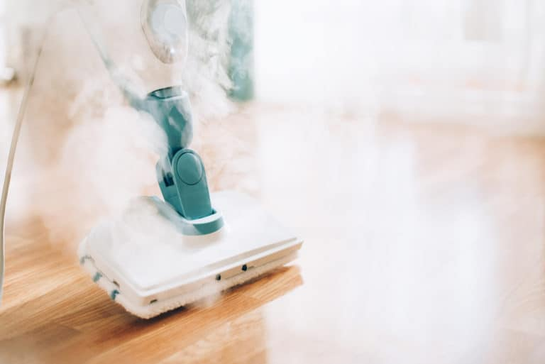 The Best Steam Cleaners in Canada